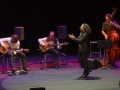 pepe-habichuela-josemi-carmona-flamenco-on-fire